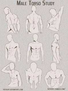 Male Torso/Chest Study by TIFFASHY