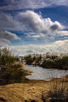 Cloudy Riverved