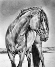 Maria D'Angelo - Fine Art In Pencil prints