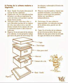 La Familia de la Apicultura - The Beekeeping of Family: Manual Apícola Ilustrado - Beekeeping Illustrated Manual. Raising Bees, Bee Boxes, Bee Farm, Chamomile Tea, Make It Work, Bee Keeping, Queen Bees, Harvest, Honey