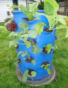 plastic planter Plastic Planter, Planter Pots, Hydroponics, Blue Flowers, 3 D, Projects To Try, Image, Gardening, Outdoors