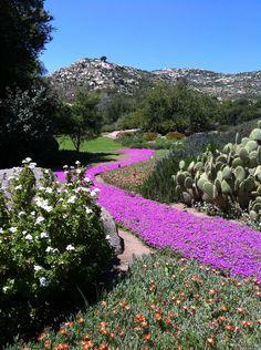 Rancho La Puerta Gardens