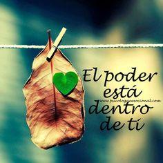 NO LO OLVIDES... (((Sesiones y Cursos Online www.ciaramolina.com #psicologia #emociones #salud)))