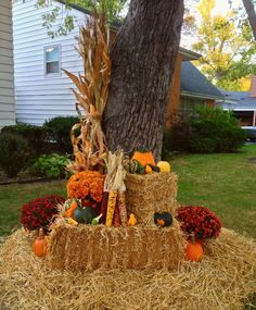 Fall decor, corn stalk, Indian corn, pumpkins, gourds, mums, hay