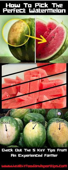 How To Pick The Perfect Watermelon 5 Key Tips From An Experienced Farmer