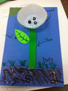 Learning About The Parts of a Plant Spring Plant and Gardening Kindergarten Lesson Plan Kindergarten Lesson Plans, Preschool Lessons, Kindergarten Activities, Parts Of A Flower, Parts Of A Plant, Plant Lessons, Plant Science, Spring Plants, Classroom Crafts