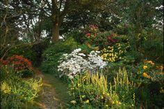 Woodland Path Garden