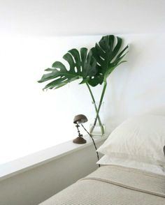 add some natural colour to your bedroom
