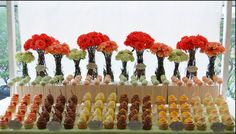 i know i won't be able to decide and will have to have several different cupcake flavors like this dessert table :)