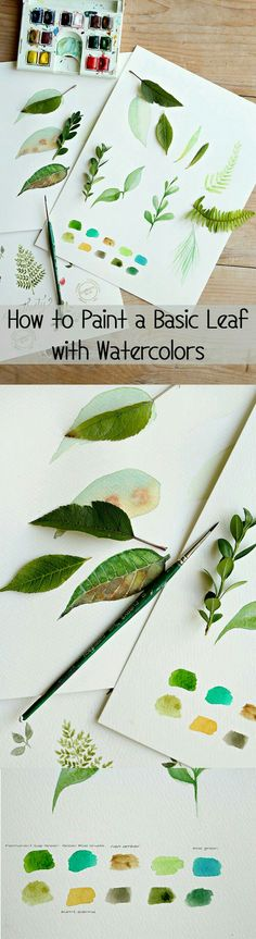 How to paint leaves watercolor techniques