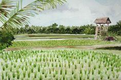 """""""Le guet""""  Rizière à Bali Aquarelle 2014 Astrid Vaccaro"""