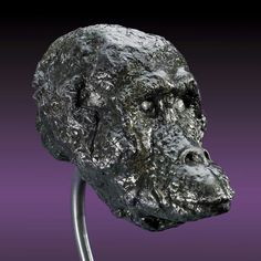 Iron meteorite fashioned into an ape face - www.galactic-stone.com - #meteorite #art