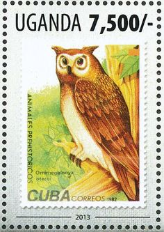 Extinct Owl sp stamps - mainly images - gallery format
