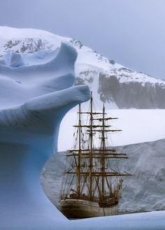 """""""©René Koster Antarctica """""""