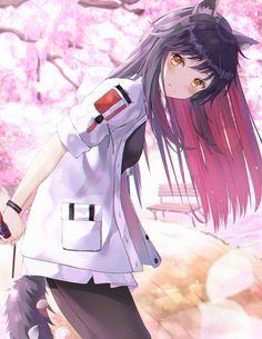 Cherry blossom date [Arknights] Anime Neko, Chica Anime Manga, Art Anime, Anime Oc, Anime Angel, Anime Art Girl, Manga Girl, Anime Girls, Anime Wolf Girl