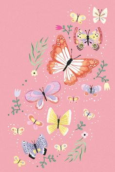 Butterfly Drawing, Butterfly Wallpaper, Iphone Wallpaper Vsco, Wallpaper Backgrounds, Graphic Design Illustration, Illustration Art, Photo Wall Collage, Cute Wallpapers, Flower Art