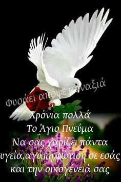 Happy Name Day, Happy Names, Image Types, Google Images, Christianity, Positive Quotes, Good Morning, Pray, Wish