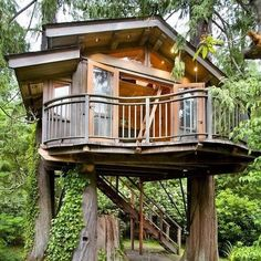 adult tree houses - Google Search