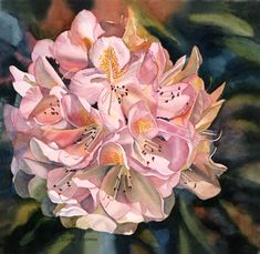 Blushing Pink Rhododendron Painting by Sharon Freeman - Blushing Pink Rhododendron Fine Art Prints and Posters for Sale