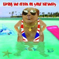 Kartka urodzinowa Living The Dream