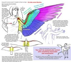 How to draw wings with feathers (via twitter: @OPIum__Limit)