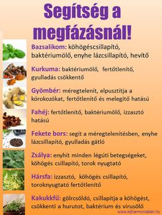 Gyógynövények megfázásra How To Eat Grapefruit, Negative Calorie Foods, Smoothie Fruit, Smoothie Recipes, Ketogenic Diet For Beginners, Nutrition, Healthy Diet Recipes, Hungarian Recipes, Eating Well