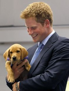 Prince Harry and a puppy. Holy cuteness.