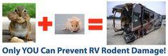 Prevent RV Rodent Damage