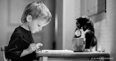 20 photos proving that children need cats