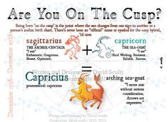 Definitely a Capricorn Astrology And Horoscopes, Astrology Zodiac, Cusp Signs, Zodiac Signs, Zodiac Cusp, Sagittarius And Capricorn, Moon Signs, Earth Signs, Sun Sign