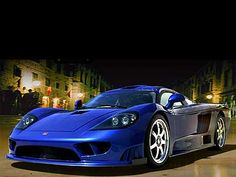 Does Saleen put out anything I don't like?