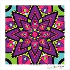 Colorfy flower