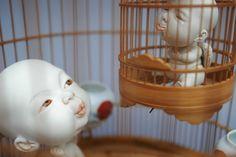 Johnson Tsang, Cages, 2015. Porcelain and bird cage. Diameter 32 H56cm © Johnson Tsang