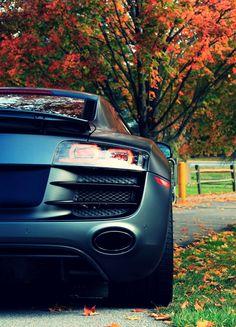 Audi R8 V10 ~ Matte Black