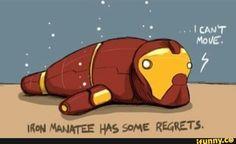 Iron, manatee, has, some, regrets