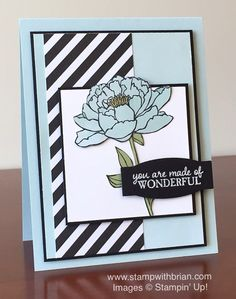 You've Got This, Picture Perfect, Stampin' Up!, Brian King, PPA290