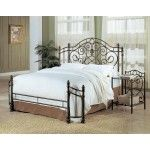 Coaster Furniture - Beckley Traditional Antique Green Metal Queen Bed - 300161Q   SPECIAL PRICE: $422.79