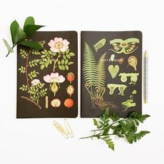 Because a girl can never have too many #notebooks,or#planners, or #journals, or any paper products for that matter. #foundforaged #botanicals #papersource