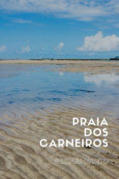 Passeio de catamarã e banho de argila na Praia dos Carneiros em Pernambuco. Viagem pelo Nordeste.