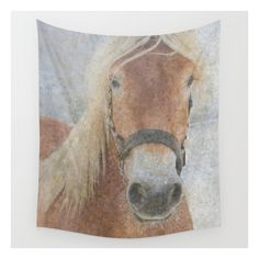 Winter Horse - Justart © Wall Tapestry ($39) ❤ liked on Polyvore featuring home, home decor, wall art, wall tapestries, photo wall art, outside wall art, outside home decor and horse wall art