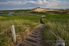 Greenwich Dunelands Trail in PEI National Park - Prince Edward Island, Canada