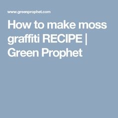 How to make moss graffiti RECIPE | Green Prophet