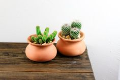 This potted cactus set is hardy and easy to care for! A great gift for new plant moms and dads. Also an adorable addition to any office or home