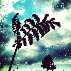 After the Rain / Elállt az eső