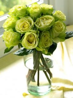 Chartreuse green roses