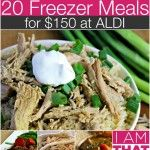 6th ALDI Meal Plan - 20 Freezer Meals for $150 {Gluten-Free Adaptable} - I am THAT Lady