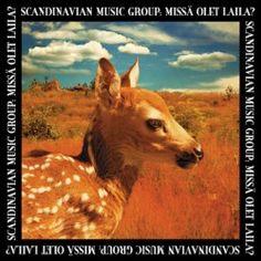 Finnish Band Scandinavian Music Group