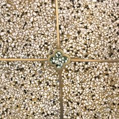 Sometimes you just need to look down to win the day #floor #terrazzo #brass