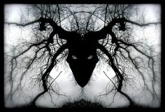 Steps To How To Remove Black Magic In 3 Days