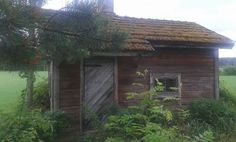 Pihasauna Cabin, House Styles, Plants, Home Decor, Homemade Home Decor, Cabins, Flora, Cottage, Plant